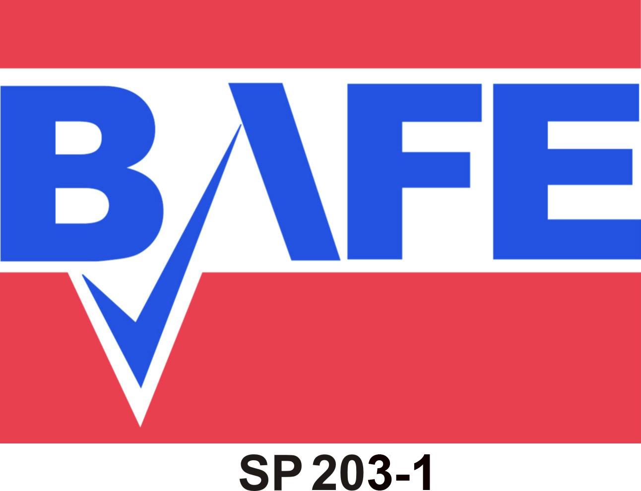 BAFEsp203-1