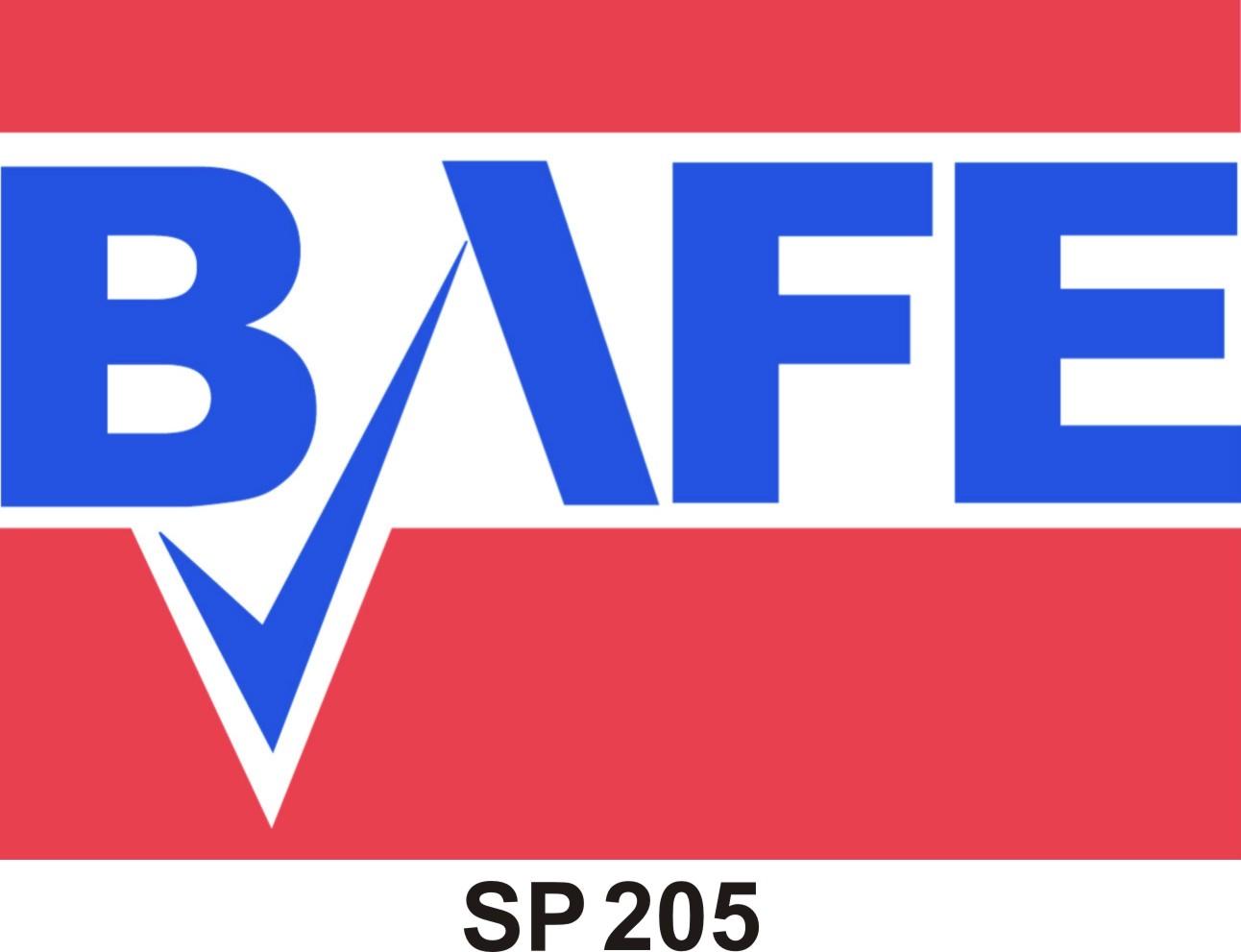 BAFEsp205 2
